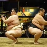 相撲実演イベントに参加!